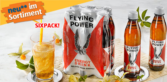 Energy Drink, Flying Power, 6x 0,33 L (PET), Mai 2011
