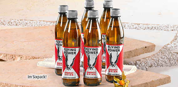 Energy Drink, Flying Power, 6x 0,33 L (PET), Oktober 2012