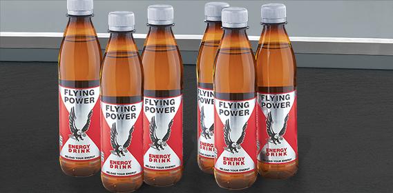 Energy Drink, Flying Power, 6x 0,33 L (PET), Dezember 2012