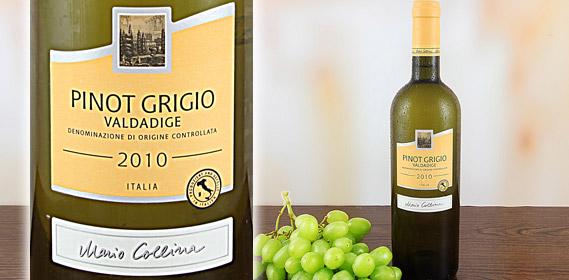 Pinot Grigio Valdadige DOC, Oktober 2011