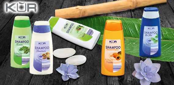 Shampoo, September 2010