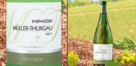 Müller-Thurgau Rheinhessen/Pfalz QbA, April 2012