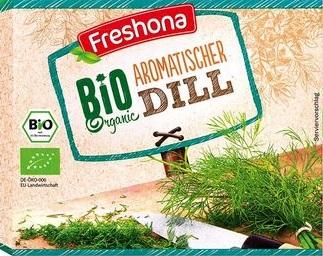 Bio Kräuter - Dill, September 2017