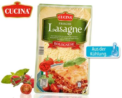 Frische Lasagne, Januar 2015