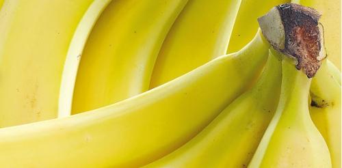 Bananen, Februar 2008