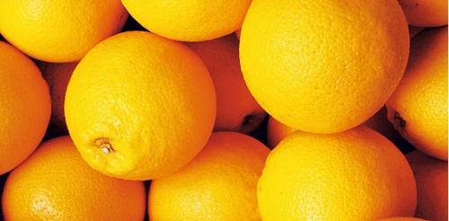 Orangen Spanien, Februar 2008