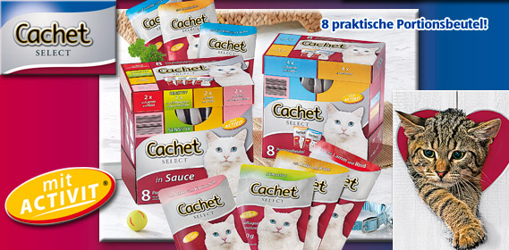 Katzenvollnahrung, 12x 100 g, Oktober 2010