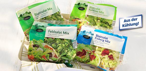 Fresh-Cut Salat, Mai 2011